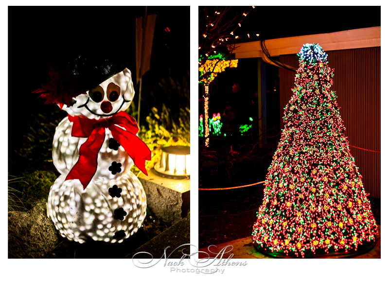wpid-Snowman-2010-12-24-11-29.jpg